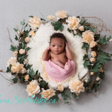 Newborn Photo Sample 2018-02-06